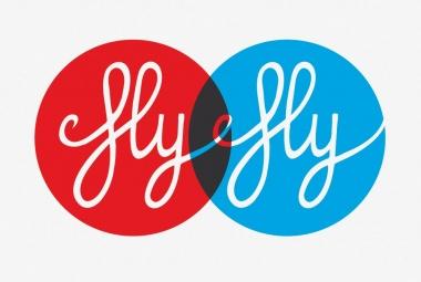 © Luca Bogoni - Fly
